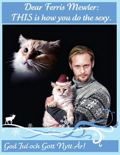 Christmas In July Cat Meme.Best Christmas Card Ever The Bloggess