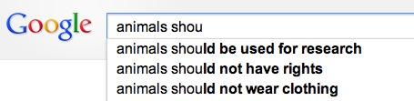 Google hates animals.