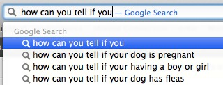 I don't even have a dog.