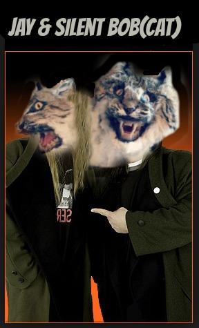 jay and silent bobcat