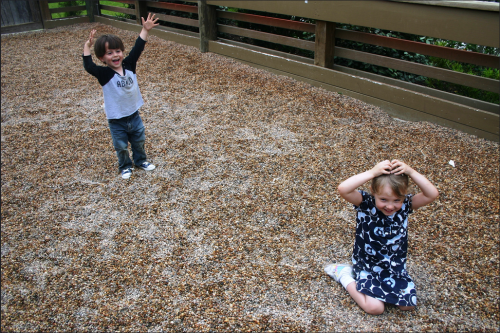 """This is a game called """"I'm balancing dirty rocks on my head"""". It was a favorite of theirs."""