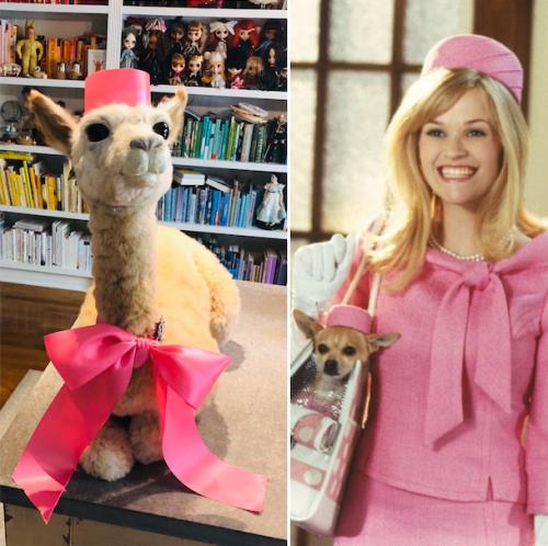 llama wearing pink, standing next to reese witherspoon wearing pink